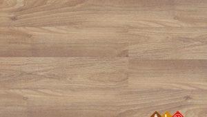 Sàn gỗ Masfloor M813 - Sàn gỗ công nghiệp Malaysia