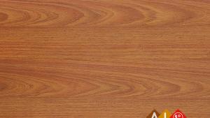 Sàn gỗ ThaiEver TE1916 - Sàn gỗ công nghiệp Thái Lan