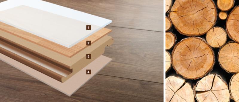 Cấu tạo sàn gỗ Hornitex