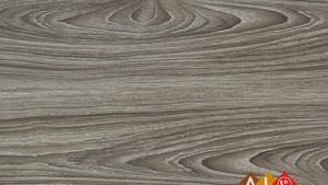 Sàn gỗ ThaiEver TE1922 - Sàn gỗ công nghiệp Thái Lan