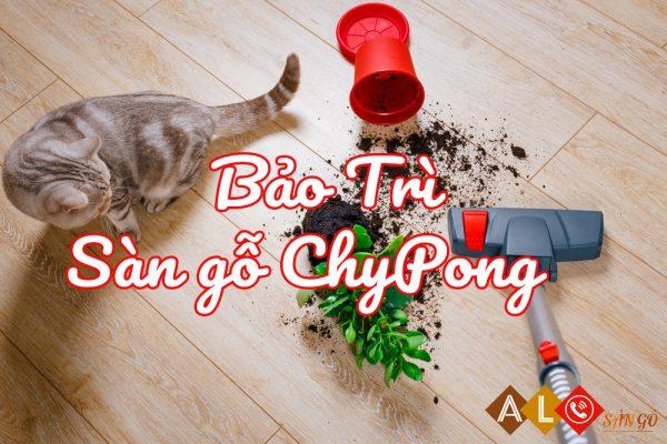 Bảo trì sàn gỗ Chypong