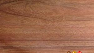 Sàn gỗ Alimor A11 - Sàn gỗ công nghiệp sản xuất tại Việt Nam
