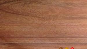 Sàn gỗ Alimor A17 - Sàn gỗ công nghiệp sản xuất tại Việt Nam